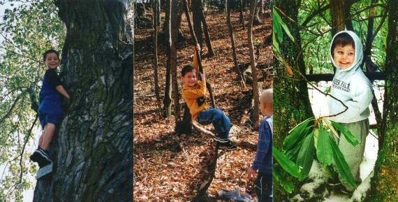Jacob in trees