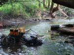 sinking creek wetlands project(18)