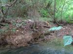 sinking creek wetlands project(19)