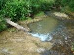 sinking creek wetlands project(46)