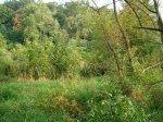 sinking creek wetlands project(51)