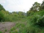 sinking creek wetlands project(63)